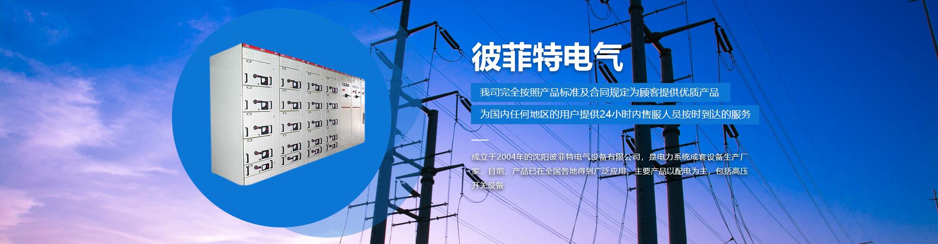 沈阳彼菲特电气设备有限公司